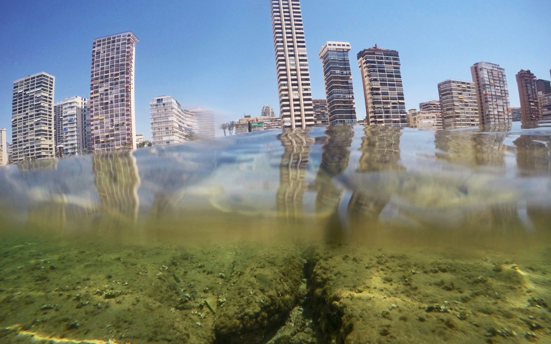 A sea level rise perspective on a city